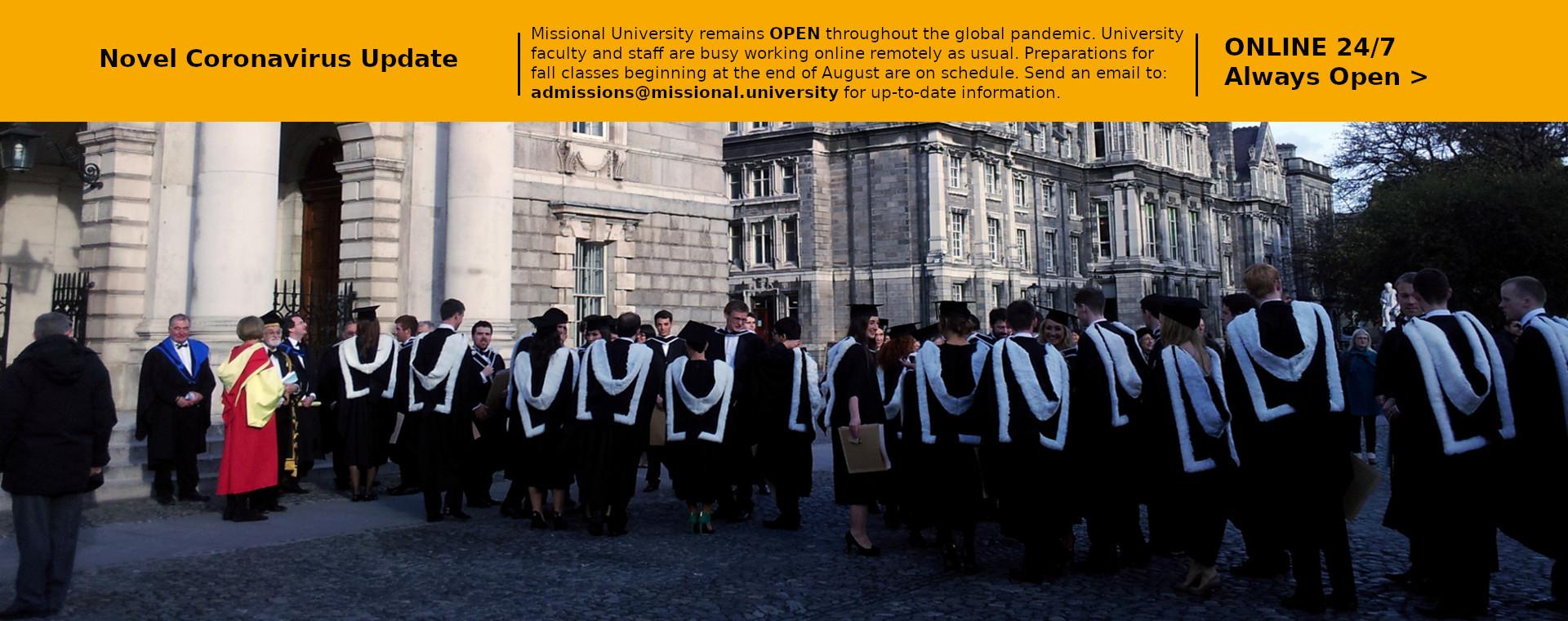 Online Global Faculty